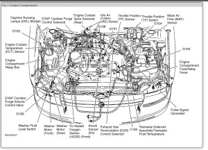 [DIAGRAM] 2000 Mercury Grand Marquis Fuse Box Diagram FULL Version HD Quality Box Diagram  27