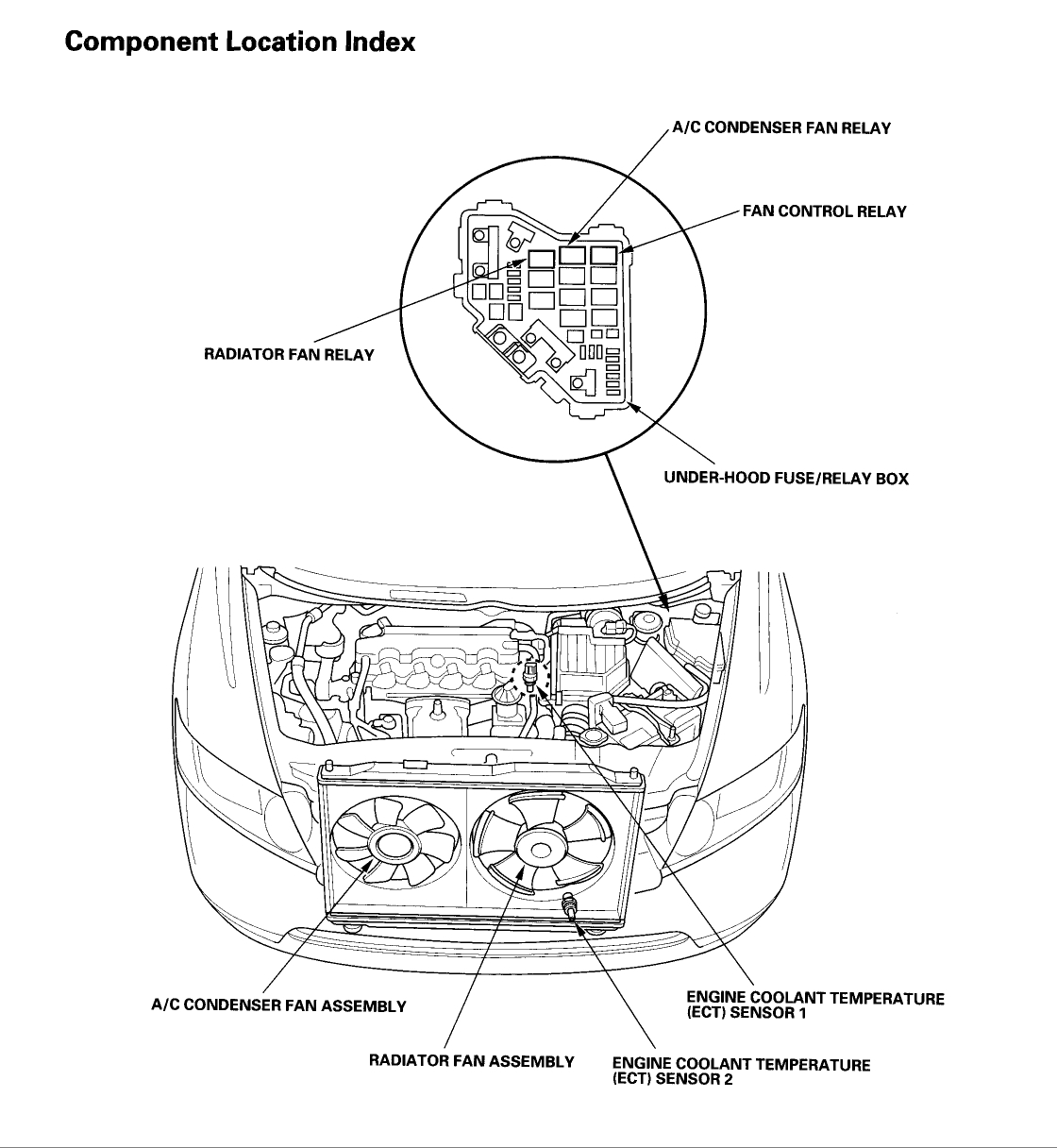 Honda Civic Ex Coupe Engine Diagram Thermostat