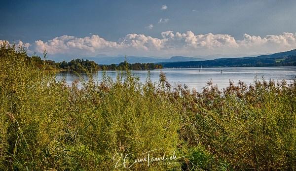 Greifensee und Ortschaft Greifensee