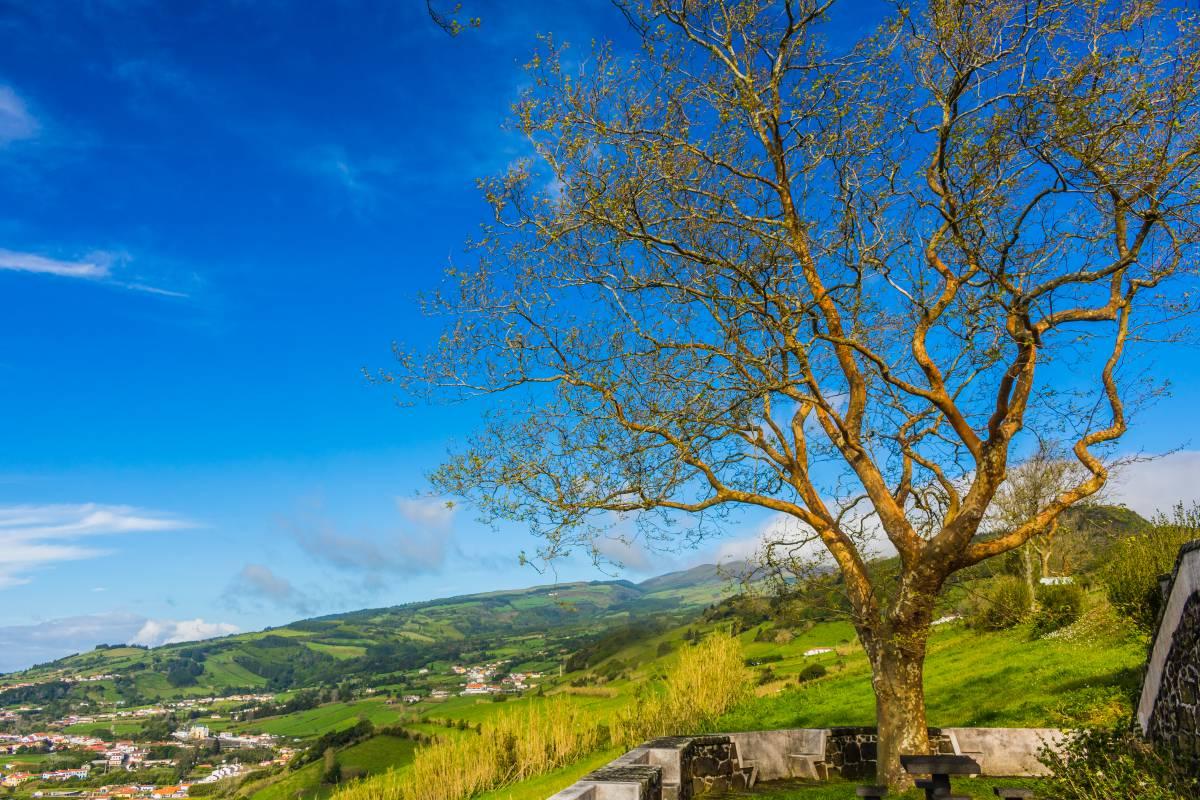 Insel Faial Azoren