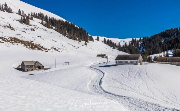 Winterwanderweg Vorder Höhi