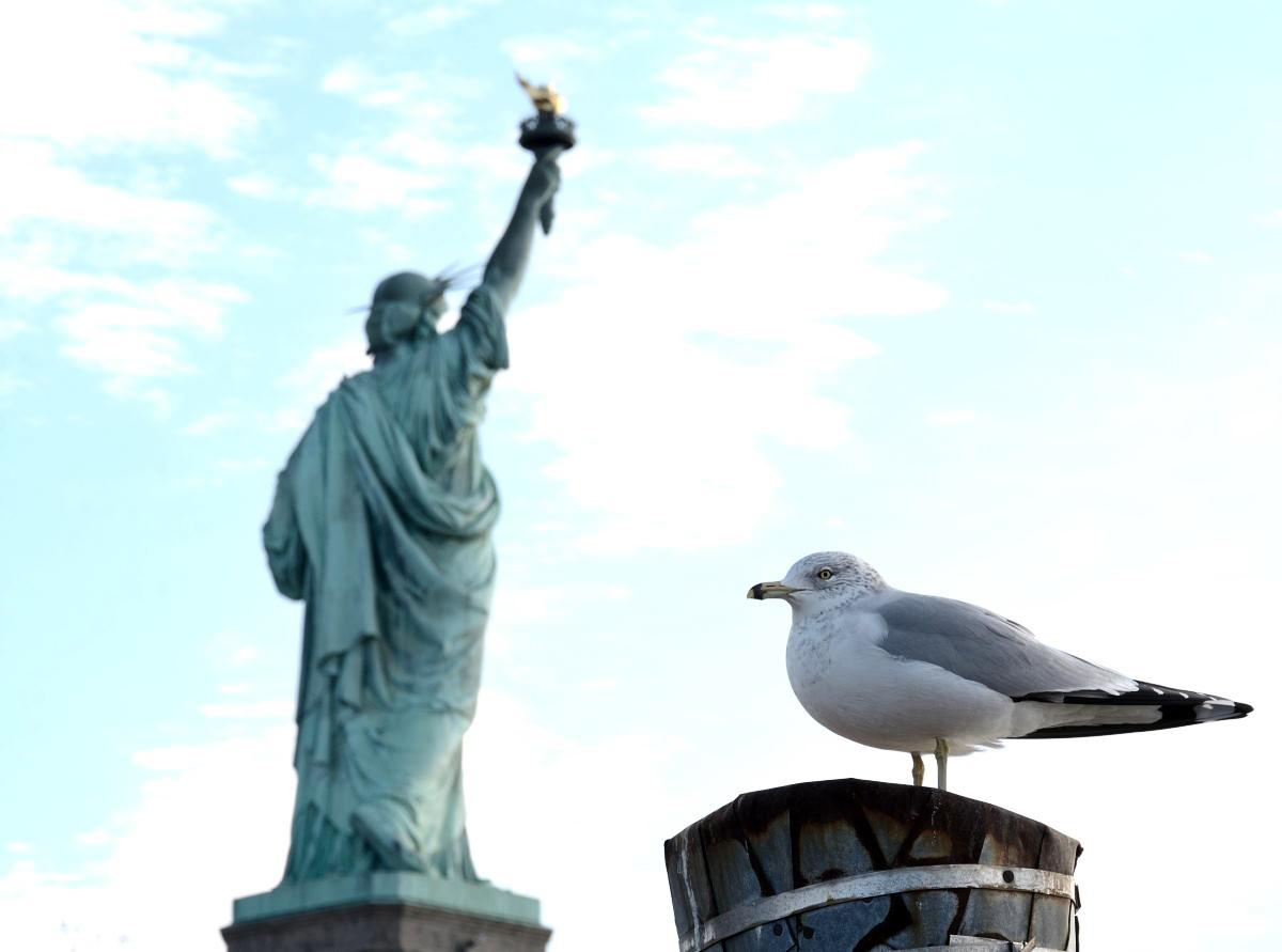 Vi state preparando per un viaggio a New York? Ecco le 10 cose che dovete assolutamente sapere!