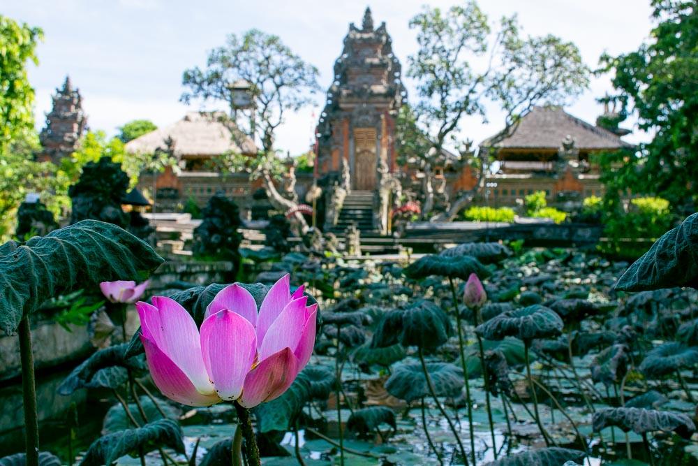 Cosa vedere a Bali Lotus Temple