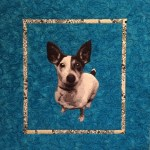 artfully quilted jack russell