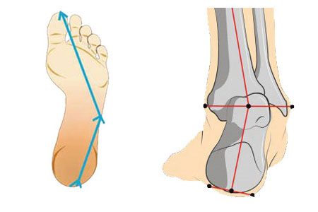 supination course