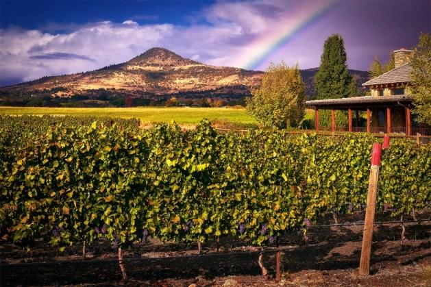 Rainbow over 2Hawk Vineyard and Winery