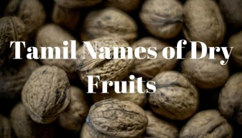 Trees Names In Tamil from English