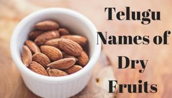 Planets Names In Telugu |