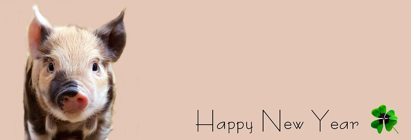 How to say happy new year in Malayalam