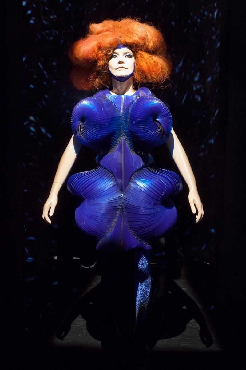 Bjorks Unique Stage Costumes Up For Auction