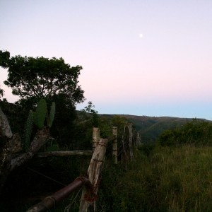 Sunset with a full moon at Camp Figtree Lodge, South Africa