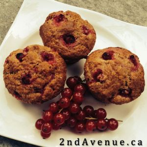 Three currant lemon muffins and some currants