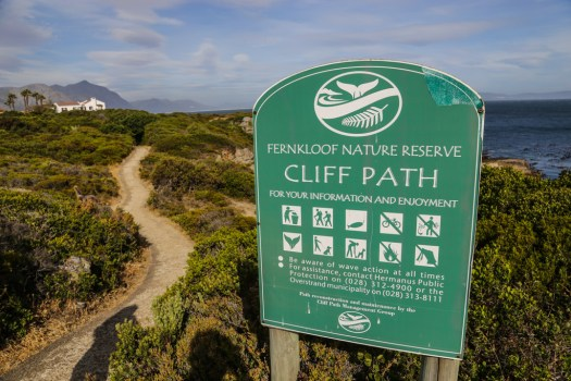 Hermanus cliff walk