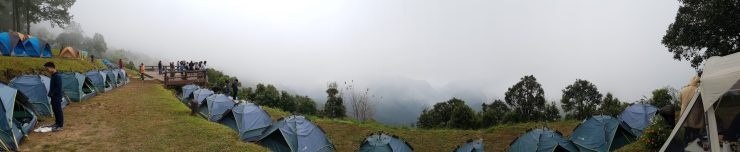 A misty morning at Doi Angkhang
