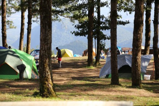 Campground at Doi Angkhang