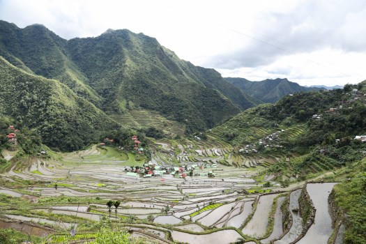 The landscaped rice terraces of Batad