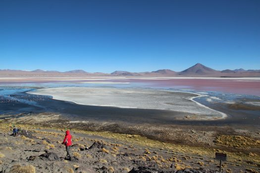 The Laguna Colorada (Red Lagoon)