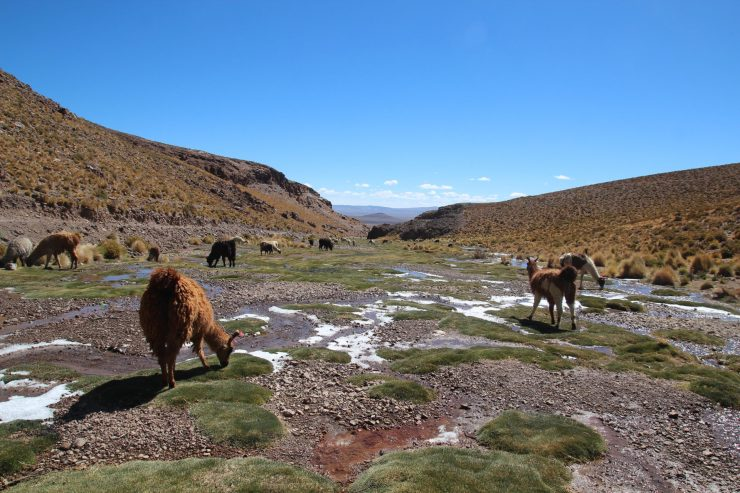 Valley in Bolivia