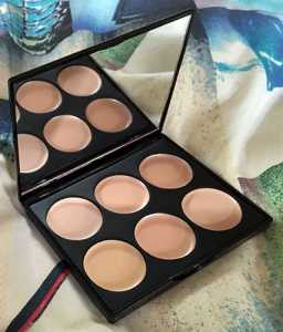 Freedom Conceal Palette Pro Light