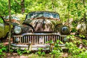 Junk car in woods. 310 cash for cars