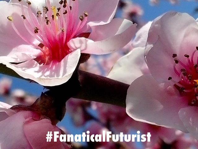 futurist_robo_bees