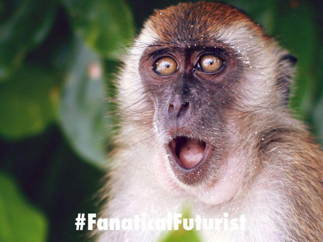 Futurist_monkeymind