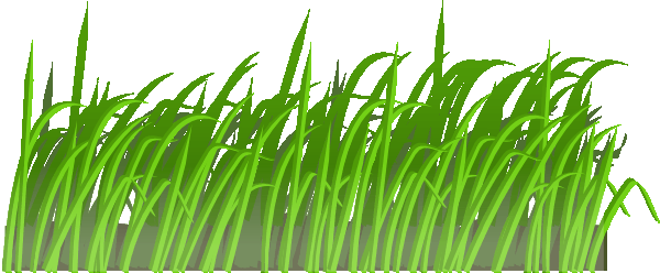 grass clipart  coloring pages to print
