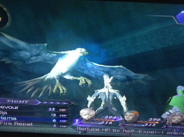 Shin Megami Tensei Digital Devil Saga bird
