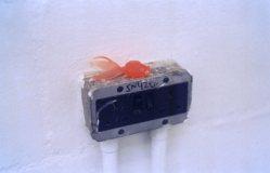 Goldfish on a plug socket