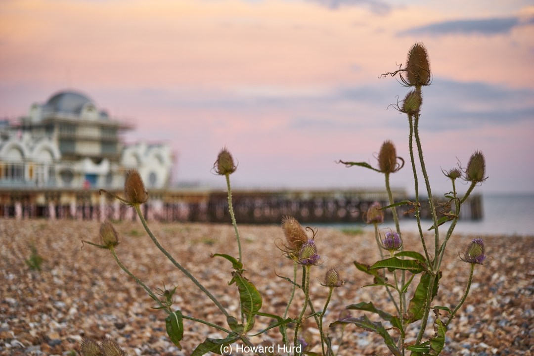 South Parade Pier, Southsea - - taken with Industar N-61 lens on Sony a7