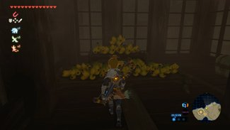 Yiga Clan Hideout - The Legend of Zelda: Breath of the Wild Wiki Guide 7