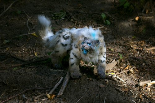 Spirit Beasts: Where To Find, How To Tame (TomTom Waypoints and Macros Included) 7 World of Warcraft