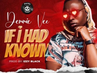 Download Demmie Vee If I Had Know Mp3