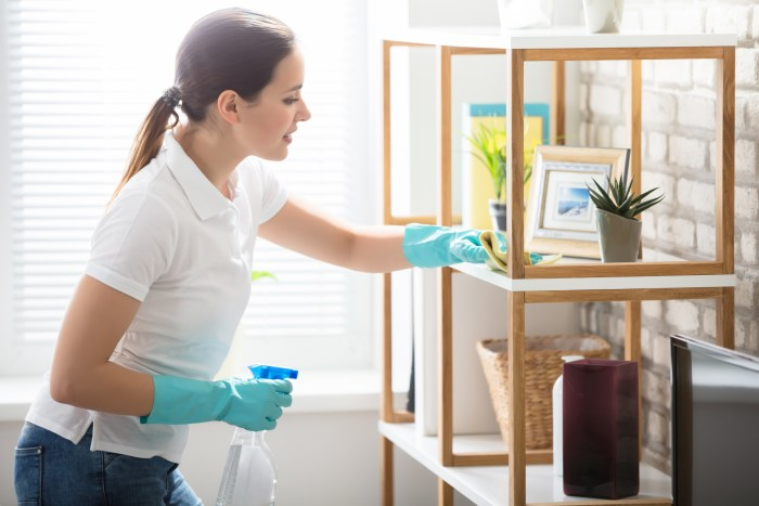 hiring a house cleaner