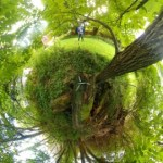 360Rize 360Penguin Little Planet Forest