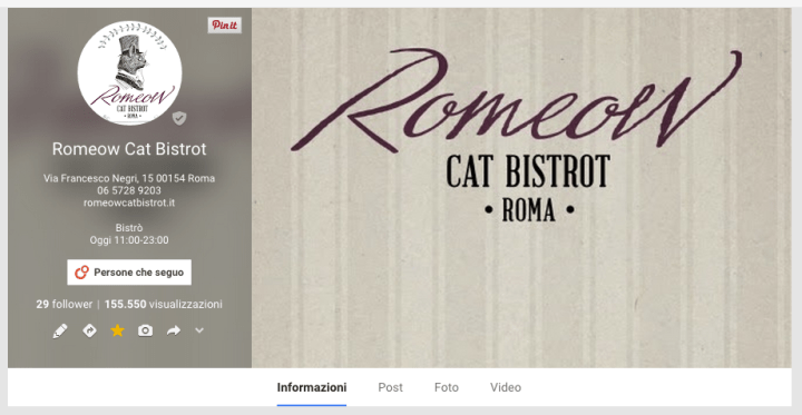 google+ romeow cat bistrot