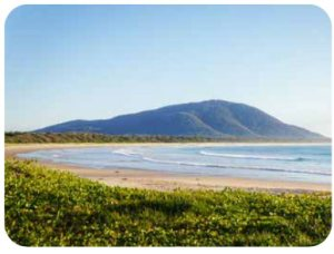 Armchair Travel Club With 365 Care – Forster-Tuncurry, NSW