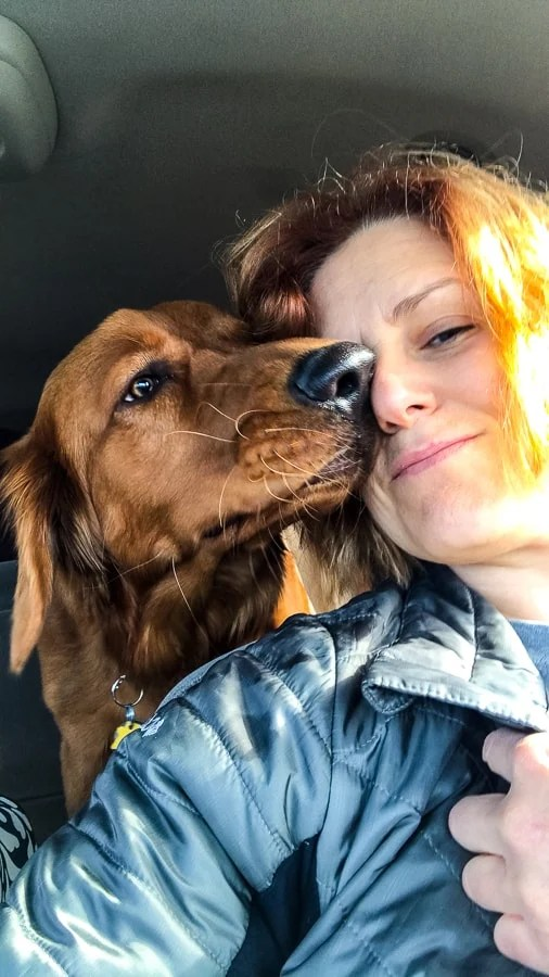 Logan the Golden Dog giving Lynne of 365 Days of Baking, a kiss.