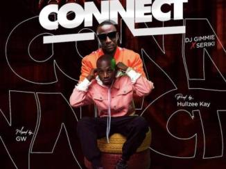 DJ Gimme Ft. Seriki – Connect MP3