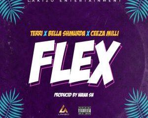 Terri Ft Bella Shmurda & Ceeza Milli – Flex MP3