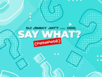 DJ Jimmy Jatt Ft Cdq - Say What? (Pete Pete) MP3