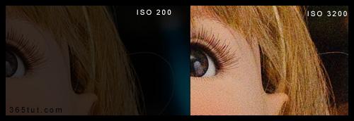 iso2 [ دروس تصوير ] الدرس رقم ٤   الآيزو ISO