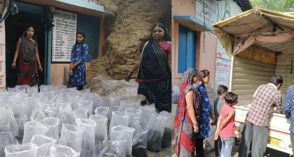 पुष्पा ने गोबर, केंचुआ और जैविक खाद बेचकर कमाए तीन लाख रुपये