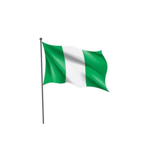 Nigeria's Population Now 201 Million
