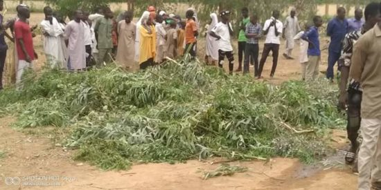 19 People Perish In Ghastly Jigawa Auto Crash (Photos)