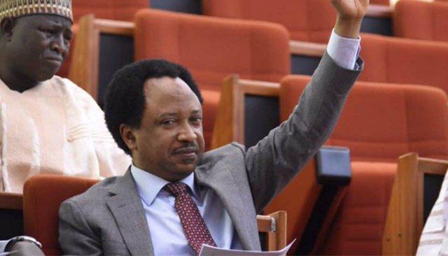 Kaduna state is becoming a mini gaza – Senator Shehu Sani 1