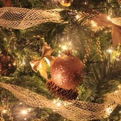 Joyeux Noël les gourmands