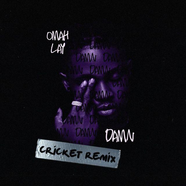 "Download Omah Lay – ""Damn Cricket Remix MP3 """