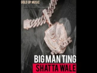 Shatta Wale – Big Man Ting Mp3 Download Audio