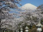石灯籠と富士
